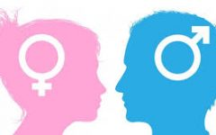 What We Think On: Gender Roles