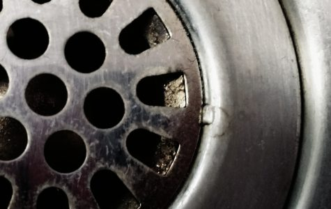 An Open Letter to Shower Users