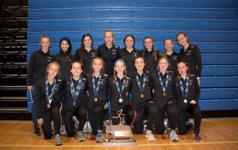 Girls Cross Country Claim Back-to-Back State Titles