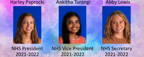 (L-R) Class of 2022 NHS officers Harley Paprocki, Ankitha Turangi, and Abby Lewis win election on April 23rd, 2021. Graphic released to NHS google classroom last school year relaying the officer election results. (file image)